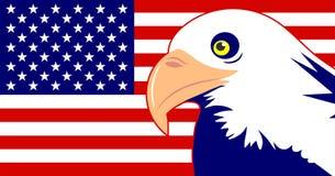 Águila e indicador Imagen de archivo libre de regalías