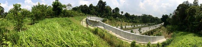 Öko-Linkbrücke - Singapur Stockbilder