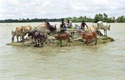 Überschwemmung im Delta Bangladesch, Klimawandel Stockfoto