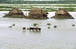 Überschwemmung im Delta Bangladesch, Klimawandel Lizenzfreie Stockfotos