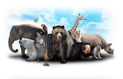 动物朋友动物园 库存图片