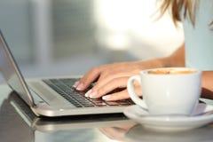 妇女递输入在咖啡店的一台膝上型计算机 免版税库存图片