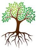 树根源商标 免版税库存图片