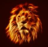 Abstract, artistic lion portrait. Fire flames fur Stock Images