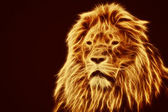 Abstract, artistic lion portrait. Fire flames fur Royalty Free Stock Photography