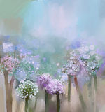Abstract flowering Onion painting Stock Photography