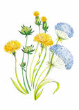 Abstract watercolor art hand drawn background with yellow dandelions . Vector Illustration. Stock Photo