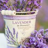 Accessories in lavender flowers Stock Photo