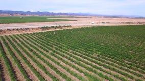 Aerial video farmland stock footage