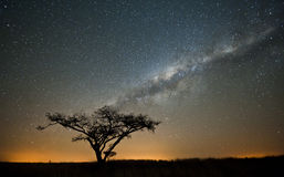 African Milky way Stars South Africa Royalty Free Stock Photography