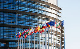 All European Union flags in front of parliament eu Stock Photography