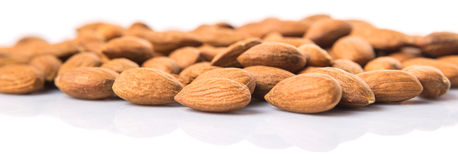 Almond Nut XII Stock Photography