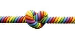 Amarre o casamento entre homossexuais do nó Foto de Stock Royalty Free