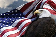 American flag and eagle Royalty Free Stock Images