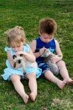 Amiamo i nostri animali domestici Fotografia Stock
