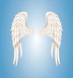 Angel wings Stock Photography
