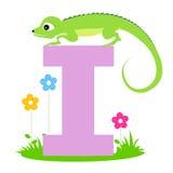 Animal alphabet letter I Stock Images