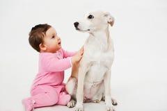 Animale domestico del cane e del bambino Fotografie Stock
