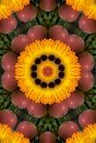 Apple and orange gardenia mandala Royalty Free Stock Photos