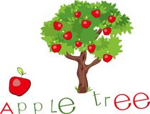 Apple tree with title Stock Photography