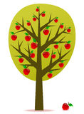 Apple tree vector Stock Image