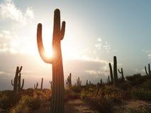 Arizona Fotos de archivo