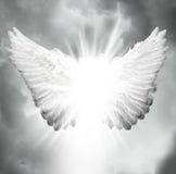 Asas do anjo Foto de Stock Royalty Free