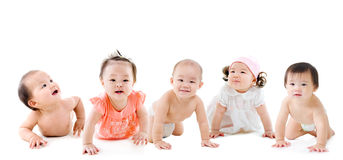 Asian babies Royalty Free Stock Image