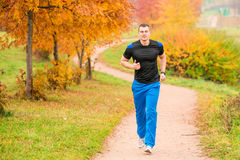 Athletic man running in the park Royalty Free Stock Photo
