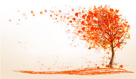 Autumn background with a tree and golden leaves. Royalty Free Stock Photo