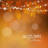 Autumn, fall background with leaves and lights,  Stock Photography