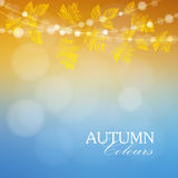 Autumn, fall background with maple and oak leaves and lights,  Stock Images