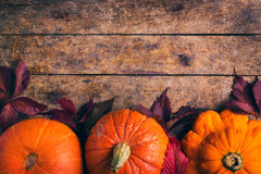 Autumn food background with pumpkins and colored leaves Royalty Free Stock Photo