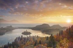 Autumn Lake Bled Immagine Stock Libera da Diritti