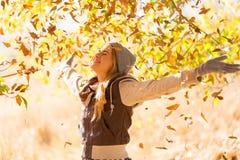 Autumn Leaves Falling Immagini Stock