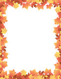 Autumn Leaves [maple] Border Stock Photography