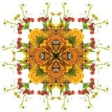 Autumn orange mandala Royalty Free Stock Photo