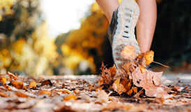 Autumn runner feet Royalty Free Stock Photography