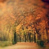 Autumn scenery in park Stock Photos