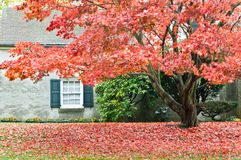 Autumn season - family house with front yard Royalty Free Stock Images