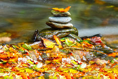 Autumn stones Royalty Free Stock Photography