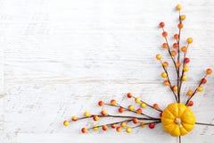 Autumn Thanksgiving Background Immagini Stock