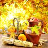 Autumn vegetables on golden forest background Stock Image