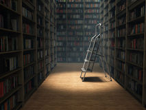 Bücher in der Bibliothek Lizenzfreie Stockfotografie