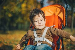 Baby in a stroller in park Stock Photography