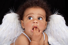 Baby Wearing Angel Wings Royalty Free Stock Photography