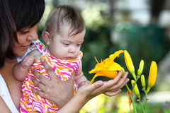 Baby and Yellow Lilly Stock Image