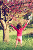Back side of happy kid near the cherry blossom tree , explore and adventure concept. Stock Images
