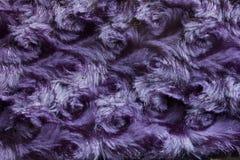 Bakgrund för lilavirvelpäls Royaltyfri Fotografi