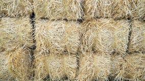 Bales of hay Royalty Free Stock Image